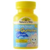 Nature's Way 儿童钙加维生素D软糖
