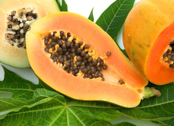 什么是番木瓜