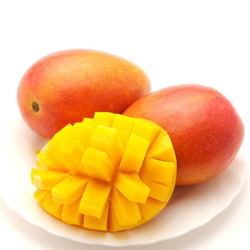水果彩铅画步骤图芒果(大图)