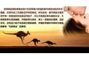 澳洲袋鼠精