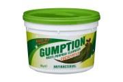 Gumption清洁剂清洁膏强效去污500g