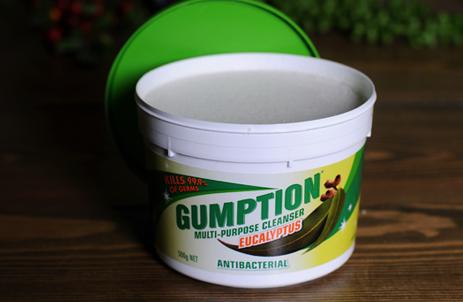 Gumption清洁膏