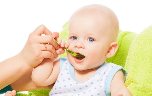 宝宝不爱吃辅食