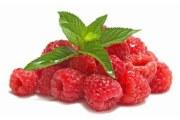 圣洁莓和覆盆子有什么不同