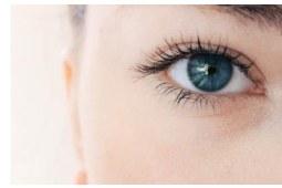 眼睛视力模糊可能是眼睛疲劳引起的