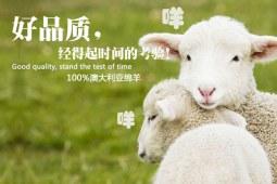 羊毛被优点你全都get到了吗?