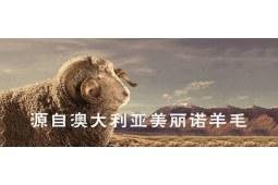 羊毛被使用禁忌你了解吗?