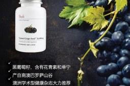 Unichi丹拿葡萄籽精华 美白淡斑抗衰老