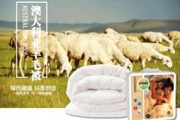 羊毛被和蚕丝被哪个好