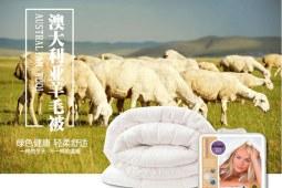 澳洲羊毛被多少钱