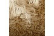 澳洲纯羊毛地毯的特点