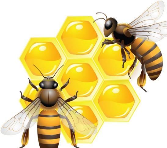 蜂巢手工制作图片