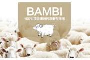 众人青睐的澳洲BAMBI羊毛被