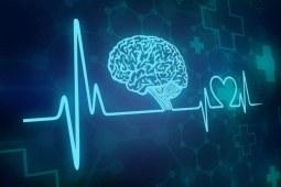 细说心脑血管疾病的日常保健