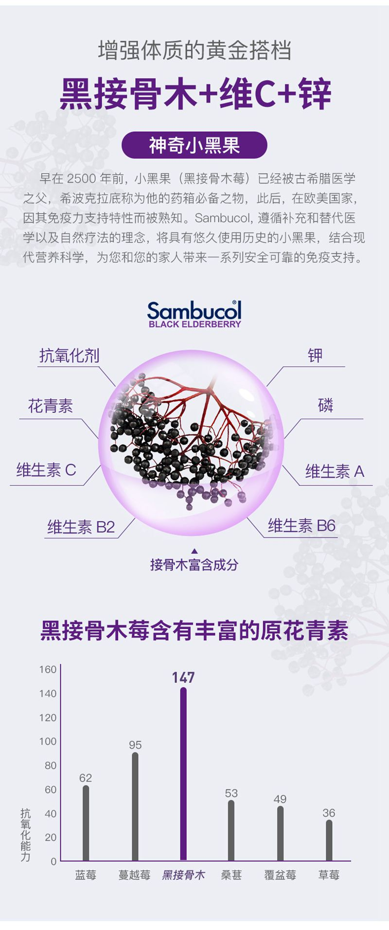 sambucol小黑果儿童黑接骨木莓补充VC维C+锌免疫力软糖50粒 成分