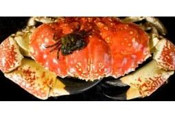 教你怎么吃到最好吃的皇帝蟹
