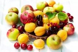 惊呆了!澳洲街头最常见的水果竟然是它们!
