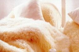 还在盖厚重的棉被吗!这么冷的天,羊毛被才是正确的选择