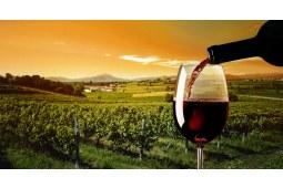 春花四月,这瓶葡萄酒最是应景 下篇