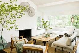 改善室内空气质量,那些必不可少的绿植 下