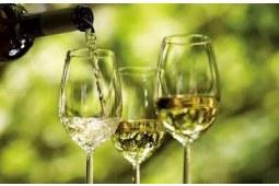葡萄酒醒酒的百科解读  下篇